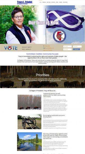 Tracy Friedel Campaign Website Design